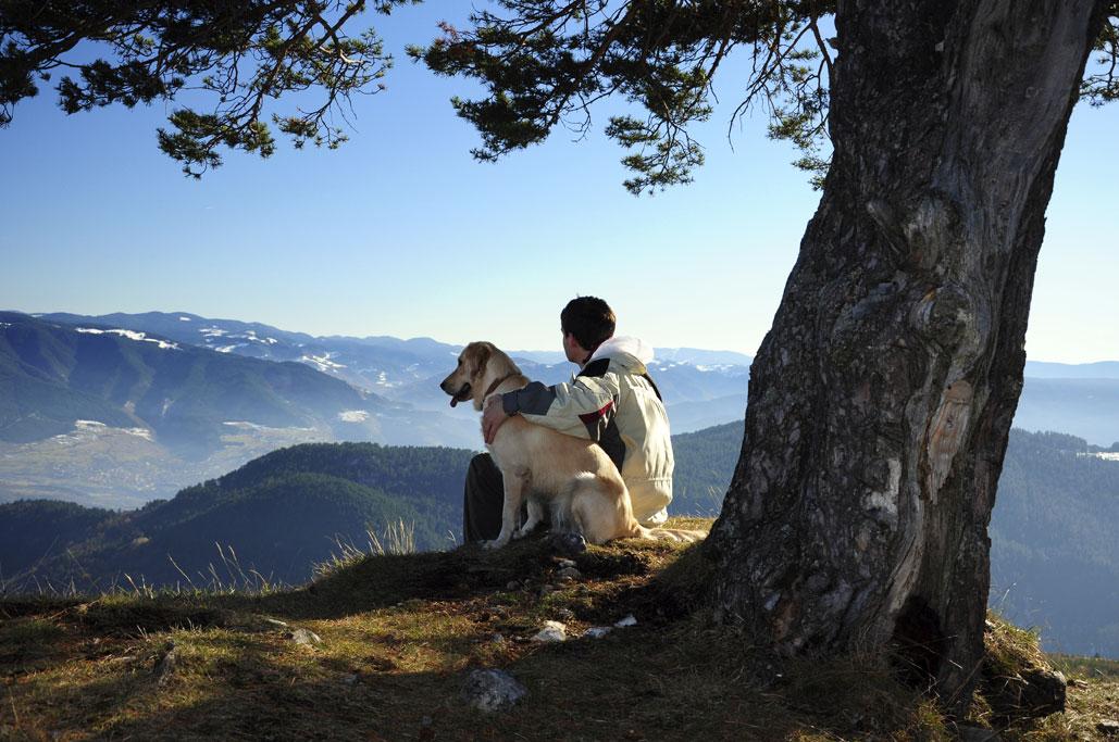 8 cose che è bellissimo fare con il cane