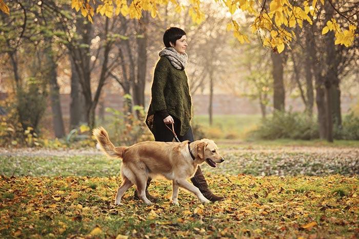 camminare-con-il-cane