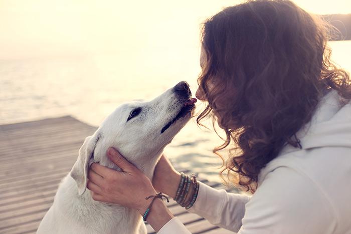 saliva-dei-cani4