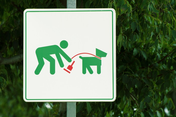 A sign informs about the rules of dog walking