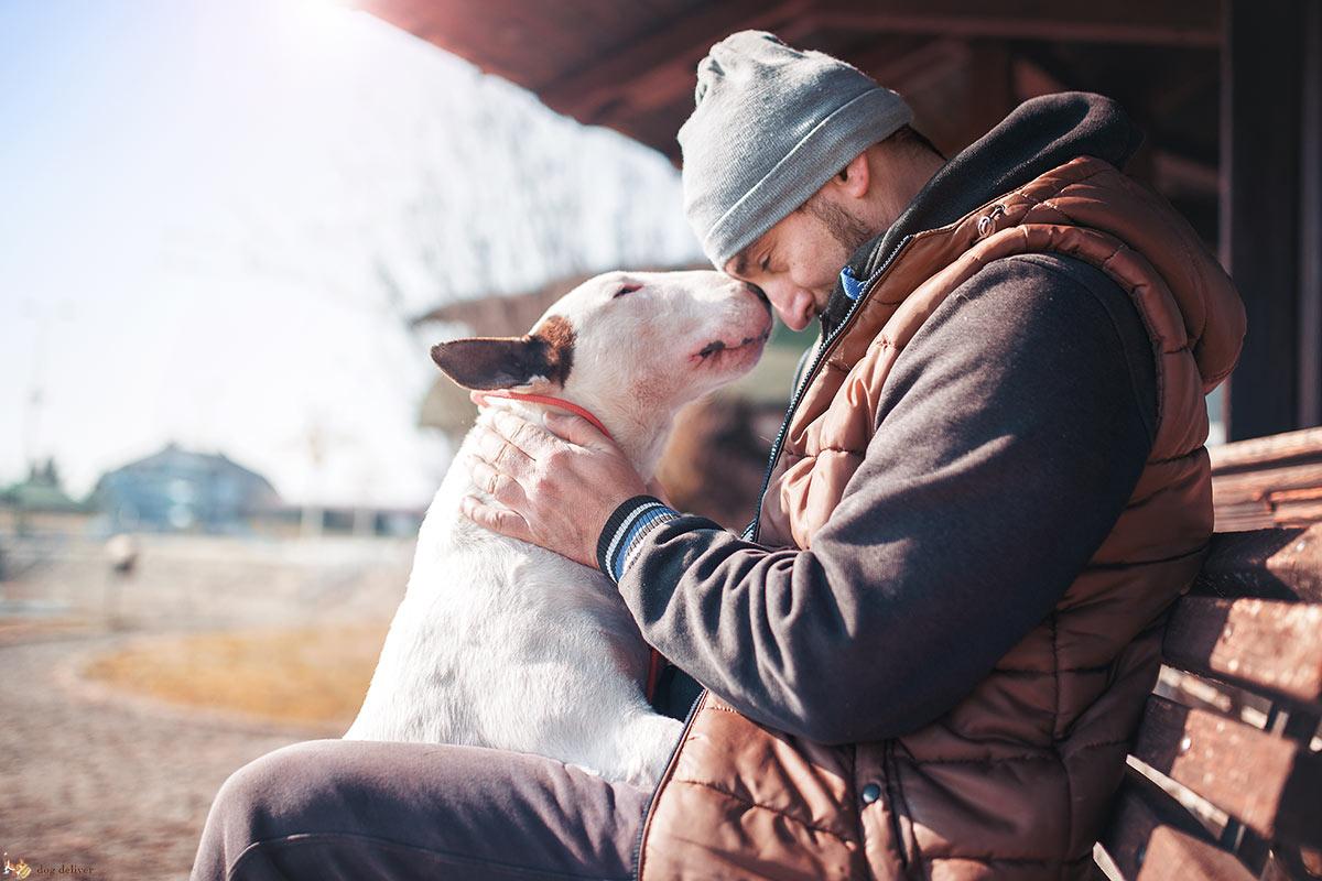 Degli umani e dei loro cani