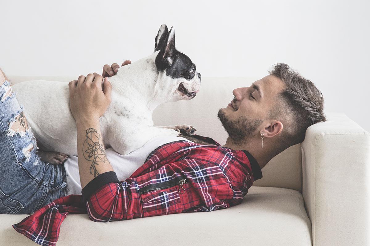 Perchè è sbagliato parlare di dominanza nei cani