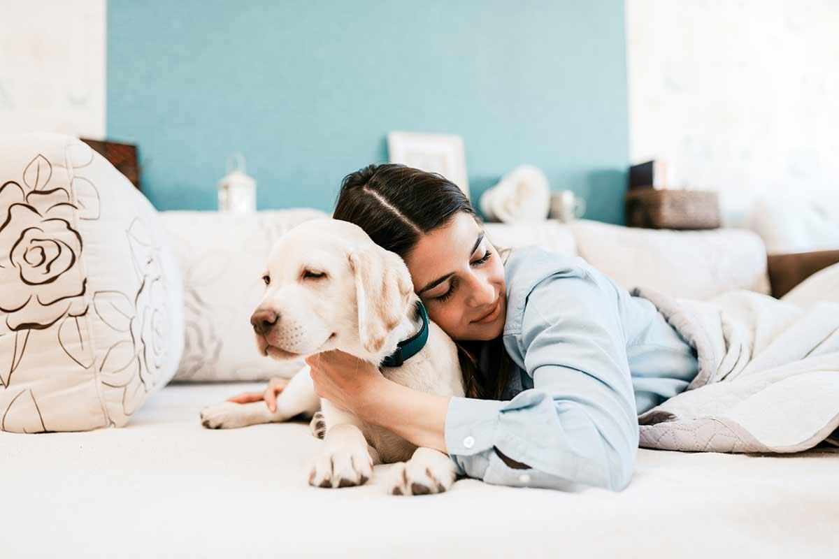 Abbracciare o non abbracciare i cani?