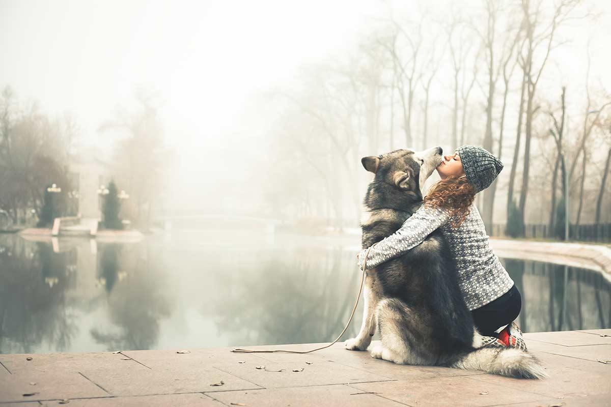 Come è forte l'affetto che lega i proprietari ai loro cani