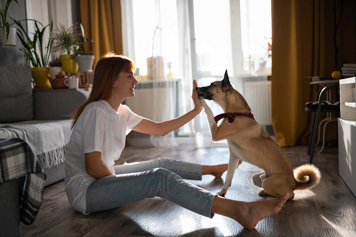 Convivere serenamente con il cane ai tempi del Coronavirus